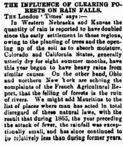Newspaper article climate forestry